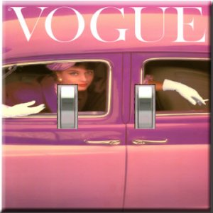 Vogue 1957 Double Switchplate Cover