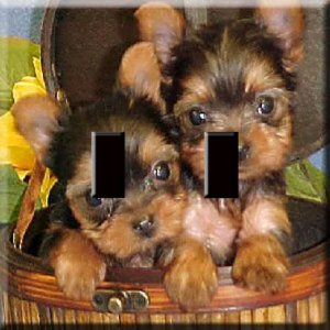 Yorkie Puppies Handcrafted Single Switchplate Cover