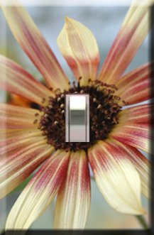 Daisy Handcrafted Single Switchplate Cover