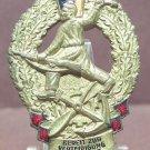 East German Military Badge Gold DDR NVA