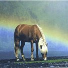 Icelandic Horse Mouse Pad