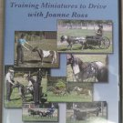 Training Miniatures to Drive with Joanne Ross - Session 1