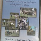 Training Miniatures to Drive with Joanne Ross - Session 2