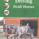 Driving Draft Horses - DVD
