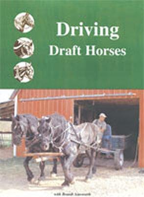 Driving Draft Horses - DVD