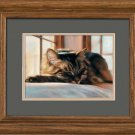 Sleeping Kitten Framed Art