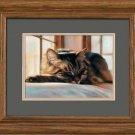 Sleeping Kitten Framed Art