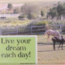 Live Your Dream! Magnet
