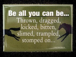 Be all you can be! Magnet