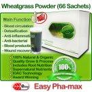 Organic Wheatgrass Powder - Easy Pha-max (HLS)