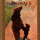 The Golden Picture Book of Animals - Photographic Illustrations - Vintage Kids Book