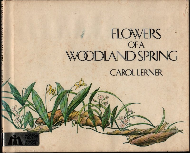Flowers of a Woodland Spring � Signed First Edition - Carol Lerner - 1979 - Vintage Kids Book