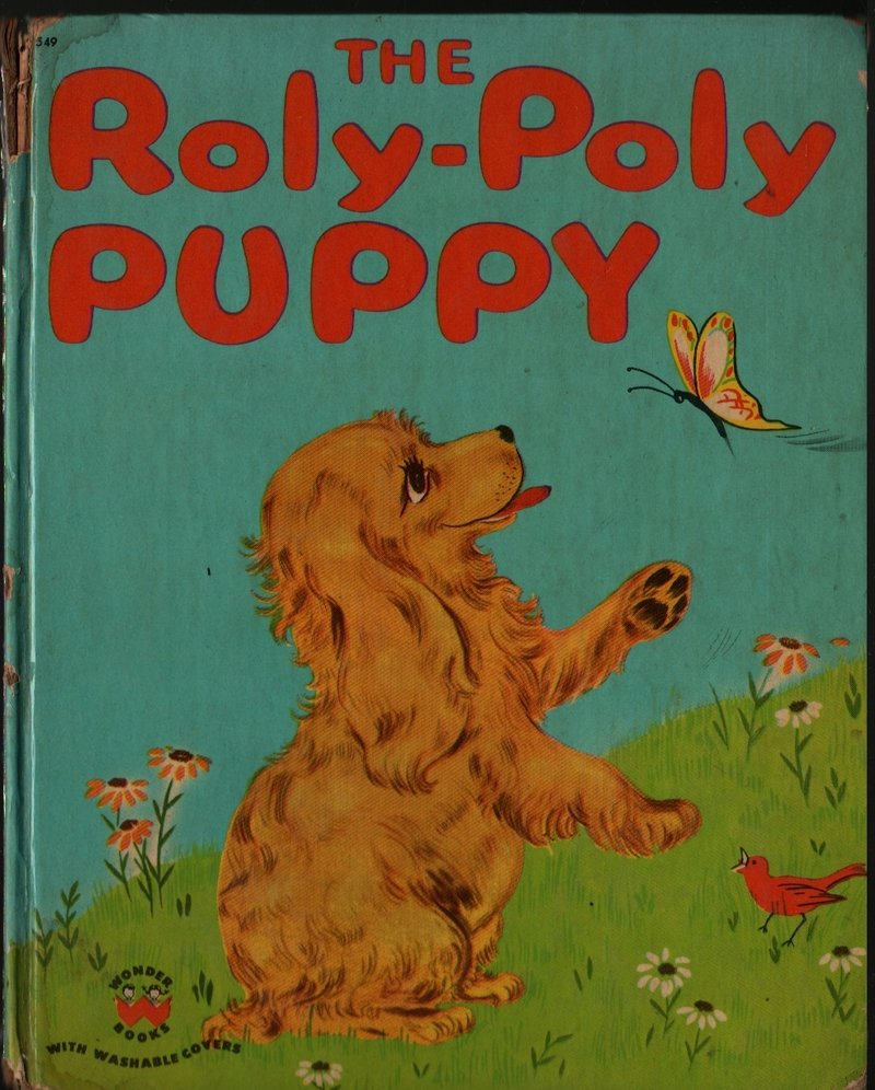 The Roly-Poly Puppy - Barbara S. Bates - Berthold - 1950 - Vintage Kids Book
