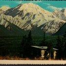 Alaskan Homestead Cabin, Alaska Joe Original, Vintage Curteich Postcard
