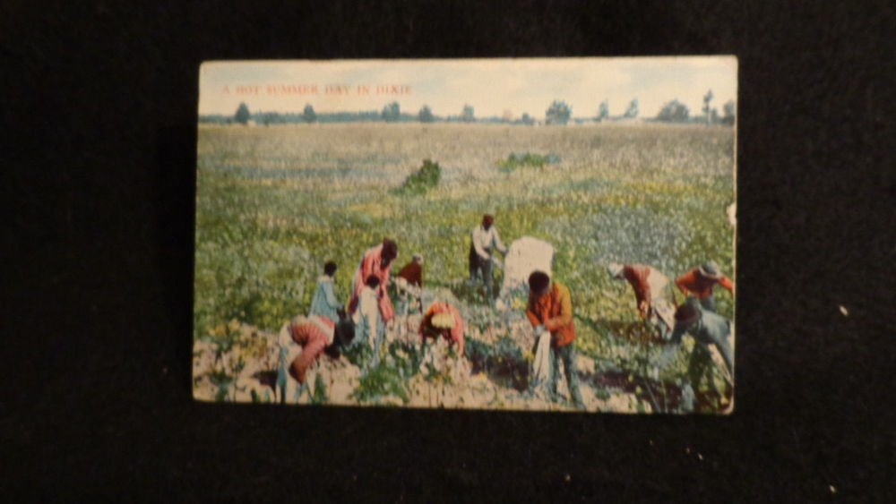 """Black Americana Postcard  """"A Hot Summer Day in Dixie""""  Picking Cotton  1911"""