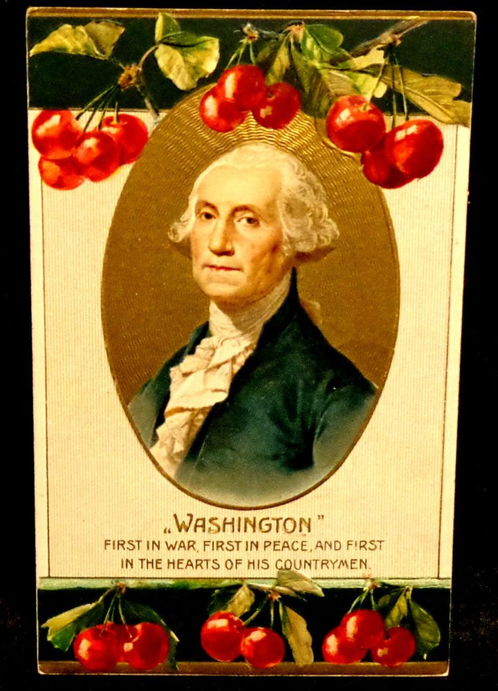 Vintage George Washington Birthday Postcard  Divided Back  Used Embossed