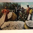 "Real Photo Postcard Black Americana ""Weighing Cotton"" Unused  Split Design"