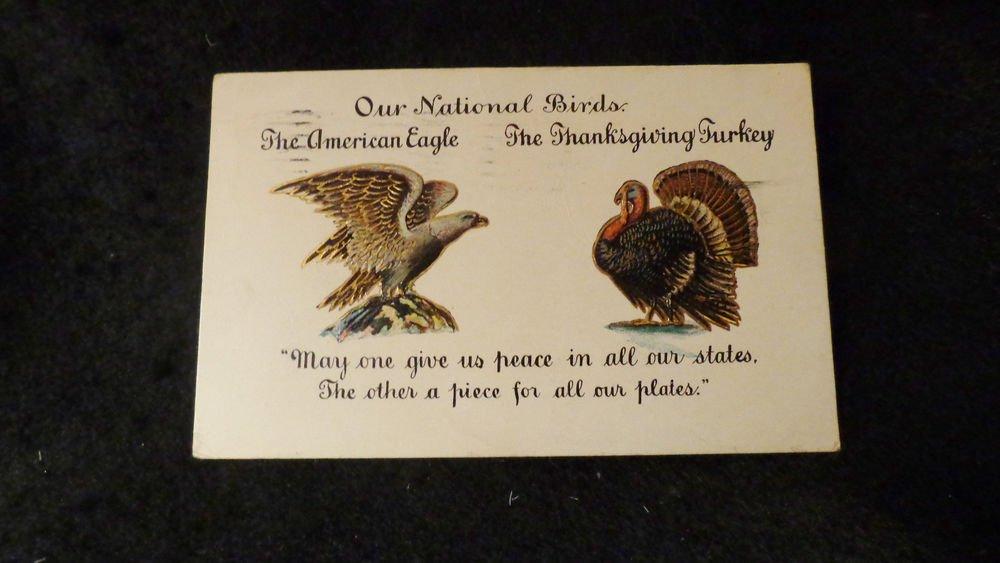 Vintage Thanksgiving Postcard  Embossed Design Undivided Back Postmarked 1906