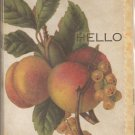 New Hello Peach Greeting Cards or Notecards - 8 Pack