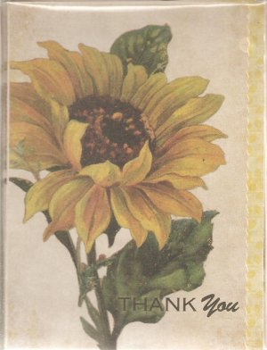New Sunflower Thank You Greeting Cards or Notecards - 8 Pack
