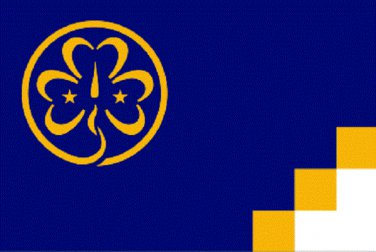 Girl Scout Flag 3 x 5