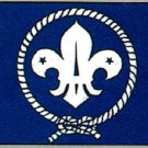 Boy Scout Flag 3 x 5