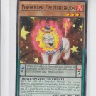 Performapal Fire Mufflerlion 1st Edition YuGiOh SECE-EN001 x1 Common
