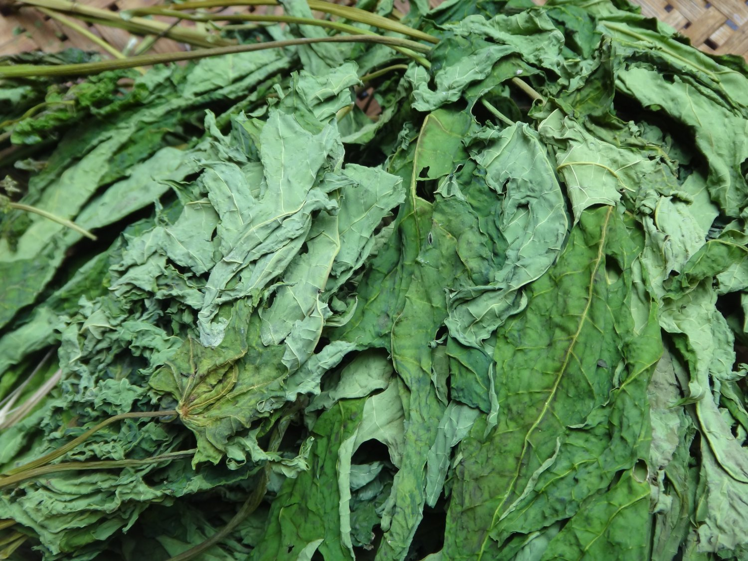 dried papaya leaves as a orgnic Papaya has a unique naturally occurring digestive enzyme called papain, and it's an excellent source of fiber now real food papaya spears are a tasty and convenient way to enjoy this angelic.