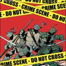 Teenage Mutant Ninja Turtles #15 A Cover VF/NM