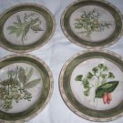 "American Atelier  Bouquet Garni Stoneware salad plate set of 4 used 8"" D"