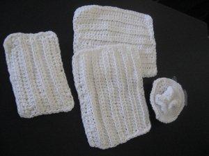 Dish cloth set