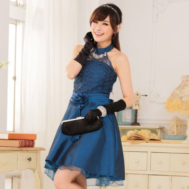 Free Shipping The new style women's dress elegant princess lace dress  D2J646BU