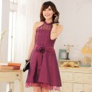 Free Shipping The new style women's dress elegant princess lace dress  D2J646P