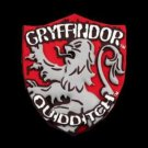 Wizarding World of Harry Potter Gryffindor Magnet Universal Studios Park