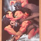 Marvel Heroes and Villains (Rittenhouse 2010) Parallel Card #15- Punisher vs. Kraven The Hunter EX