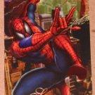 1994 Flair Marvel Universe (Fleer) Card #5- Spider-Man VG