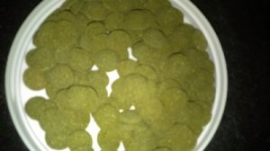 Algae Wafers 1 lb Shipping Included