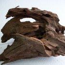 Malaysian Driftwood Large