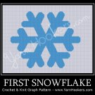 First Snowflake - Afghan Crochet Graph Pattern Chart