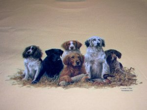 New Dogs in Haystack Adult Medium 2 sided