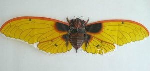 "Exquisite 62"" Golden Giant Cicada Kite Art Deco Gift"