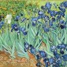 Iris gladdon fleur-de-lis ----500 Large Piece Wooden Jigsaw Puzzle