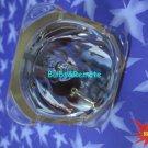 FOR ACER EC.J2701.001 EC.J2702.001 PH730 PD525D DLP projector lamp bulb only