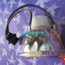 FOR OPTOMA DS216 DS316 PRO350X DW318 EX536 HD67N DX319 DLP projector lamp Bulb