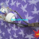 FOR NP115 NP210 NP215 NP216 NP110 NEC NP13LP PROJECTOR Replacement LAMP