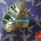 FOR TOSHIBA TLP-LW7 TDP-P75 TLPLW7 DLP Projector Replacement Lamp Bulb