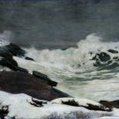 Winter Coast DETAIL Winslow Homer Poster 20X30 Art Print