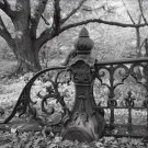Black and White Photo 8X10 Central Park New York Bridge 27 Balustrade