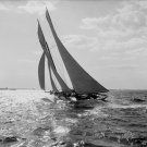 Black and White Photo 8X10 Schooner Ariel Yacht Race