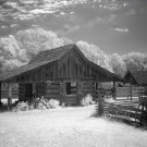 Black and White Photo 8X10 Landmark Park Farm Alabama